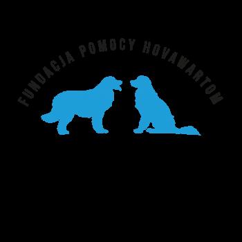 logo fundacja_jasne tło czarna wstęga